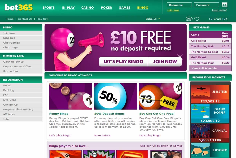 bingo site